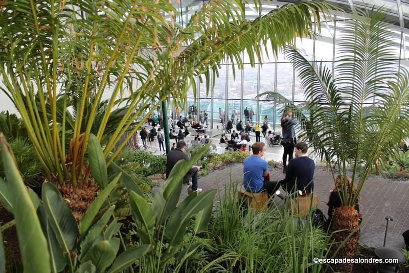 Allez découvrir le Sky Garden de Londres;un jardin paysager au sommet d'un gratte ciel