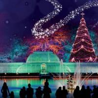 Christmas at Kew©Royal Kew
