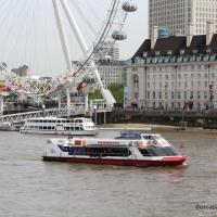 City cruises croisieres1 n 1