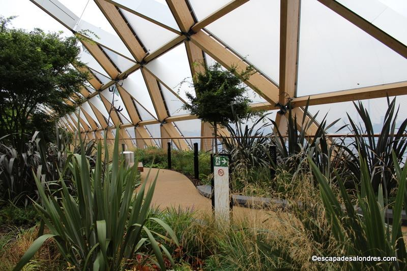 Roof Garden Crossrail Place