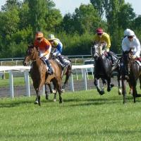 Royal Ascot Horse Racing