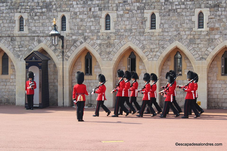 Windsor guards 02