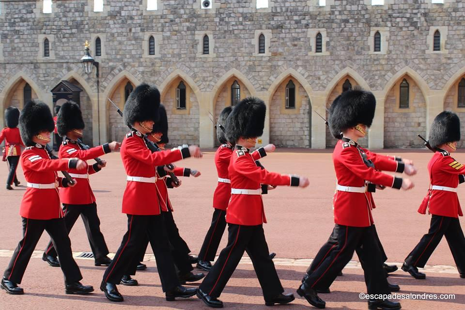 Windsor guards
