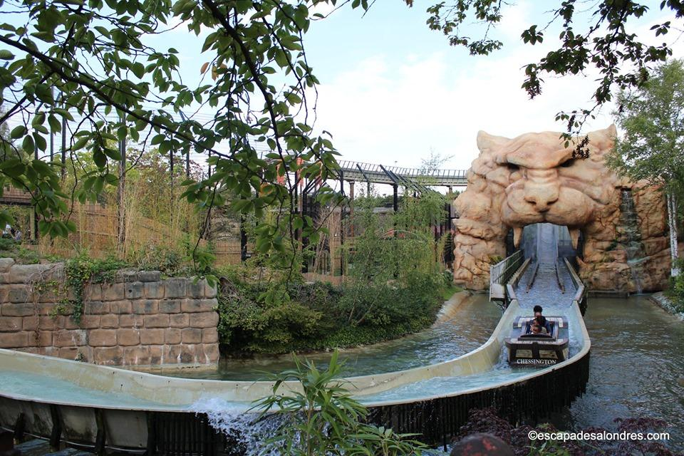 Chessington world Tiger Rock