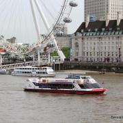 City cruises croisieres1 n 1