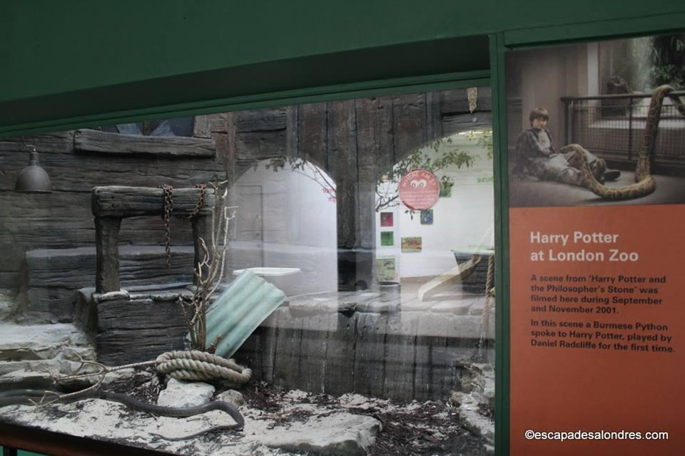 Harry Potter London zoo Reptile House