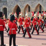 Windsor guards 013 n 1